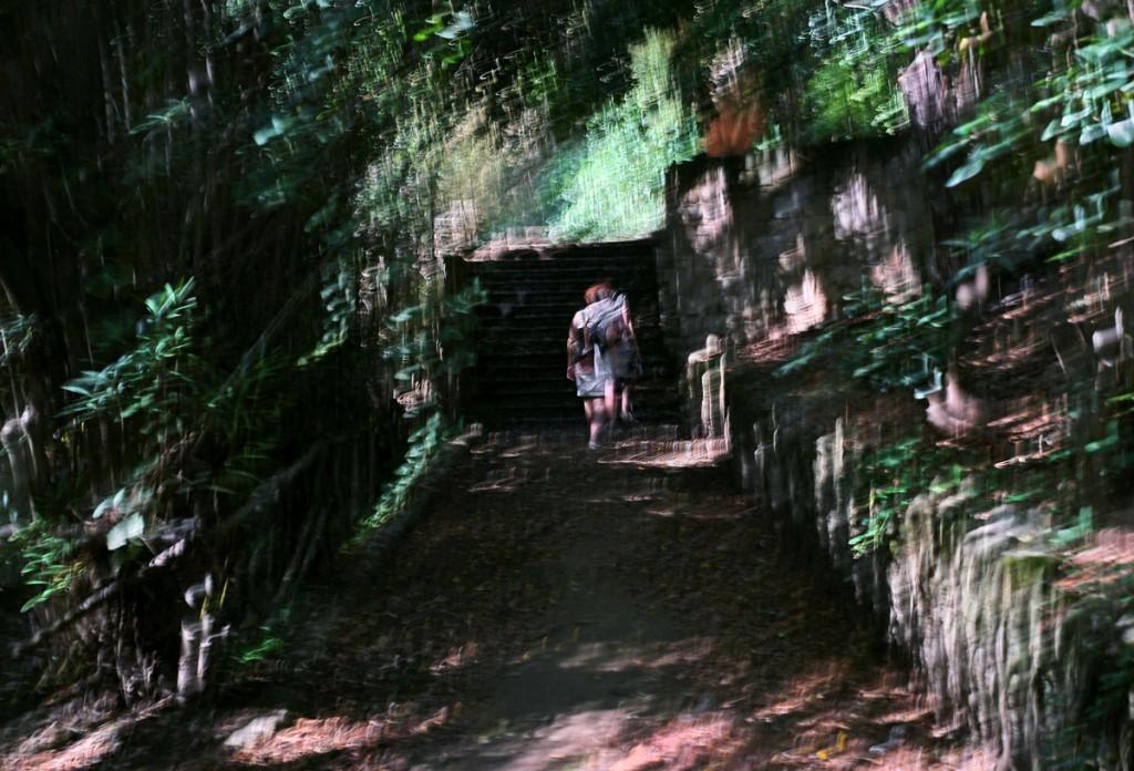 007-bernd-donabauer-rodini-park